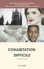 Cohabitation Difficile {BLAIMIONE} by 0h1o3_