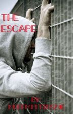 The Escape(Book 1) by MuffMittins746