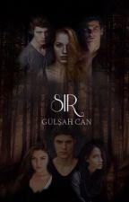 SIR by gulsahhcan