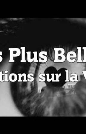 Citations Sur La Vie La Vengeance Wattpad