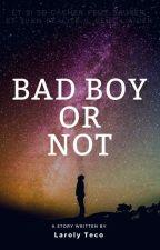 Bad Boys Or Not by LarolyTeco