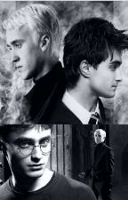 Year Two ~Draco Malfoy x Reader x Harry Potter~ by ForestOfAshes