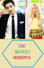 The Secret Mission(Xiumin Fanfic)(Completed) by smilemist99