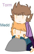 The Story of Medd and Torm  by jewlepawz_159