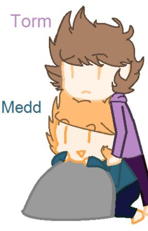 *DISCONTINUED* The Story of Medd and Torm  by jewlepawz_159