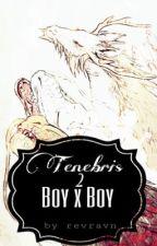 Tenebris 2  boy x boy by revravn