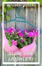 Slow Life (Joshler) by petewentzisdead
