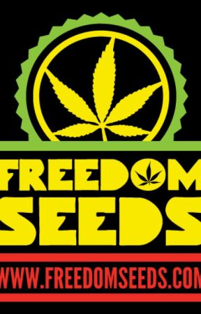 Freedom Seeds - UK Seed Bank - Cannabis Seeds by accleventnewoffice