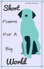 Short Poems for a Big World by MissCVEM