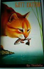 Gjett katten! by Thistlefur