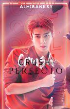 Crush Perfecto ♔ HunHan  by betxsoworld
