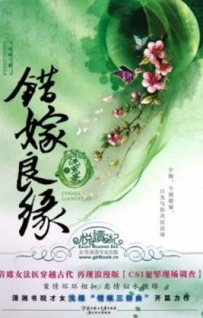 A Mistaken Marriage Match: Record of Washed Grievances by xiaodaiyu