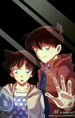 Câu chuyện tình yêu của Ran và Shinichi