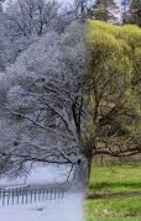 Seasons by StarRoseColors