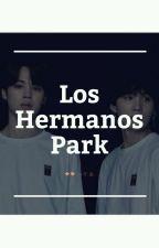 Los Hermanos Park ✖ Yoonmin by -xTkyjijinx