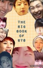 The Big Book of BTS by KaylaIsPurple
