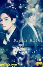 The Brown Kite(အညိဳေရာင္ စြန္ငယ္) by PuppyYoda_lover
