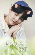 Jealous Cat \\ Yoonmin by nobodybutjimin