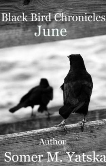 Black Bird Chronicles : Book One :  June
