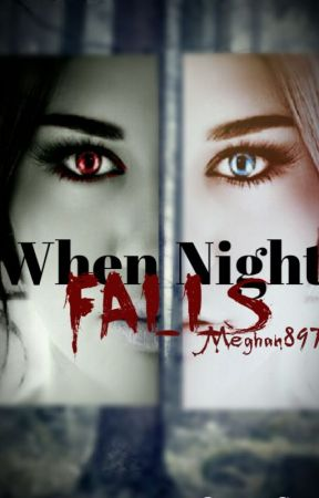 When Night Falls by meghan897