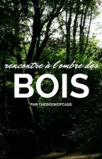 Rencontre A L'ombre Des Bois[En Pause] by TheBookOfCass