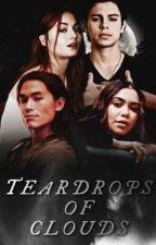 Teardrops of Clouds [1] | Teen Wolf by cruelcities