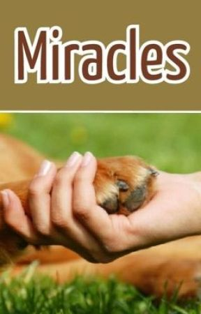 Miracles(liam payne) by AmandaLynn898