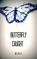 Butterfly Caught by LillilX