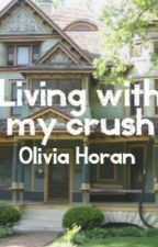 Living With My Crush by xlivzyxo