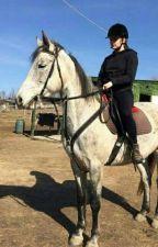 Az Én Lovas Életem by Horse_lover_2004