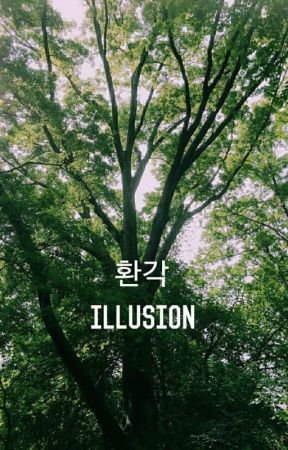 illusion ; vkook by -darkcielo