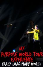 My PURPOSE TOUR Experience by CrazyImaginaryWorld