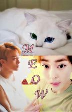 MEOW!! - ChenMin by angiely1999