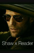 Shaw x Reader by MissyR33
