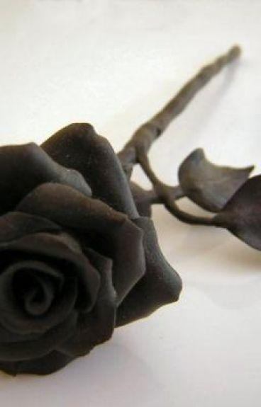 The Living Works of the Black Rose Killer