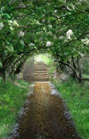 The Garden by SweetpeaEKG