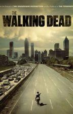 The Walking Dead apocalypse  by Whitesnox