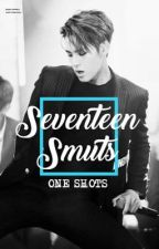 SEVENTEEN SMUTS!!  by hansolsiceicebaby