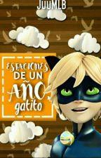 Estaciones De Un Año, Gatito {Marichat} || Miraculous Ladybug by JuuMLB