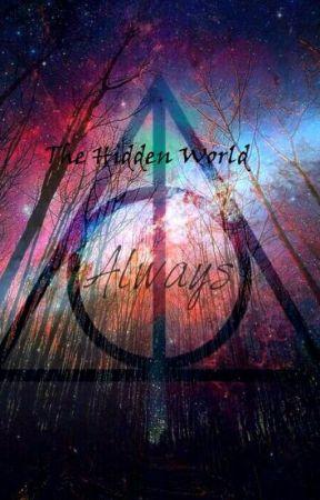 Harry Potter: The Hidden World by BoPol2