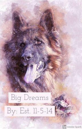Big Dreams by Archerwolf4t4t5y
