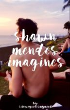 shawn mendes imagines by silenceguidesmymind