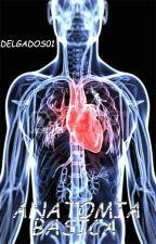 Anatomía: Conoce El Cuerpo Humano [Guía Basica] by DelgadoSO1
