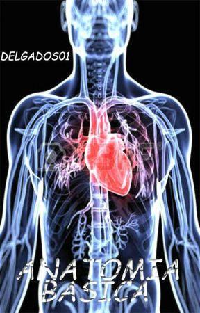 Anatomía: Conoce El Cuerpo Humano [Guía Basica] - Lección 3 - Signos ...