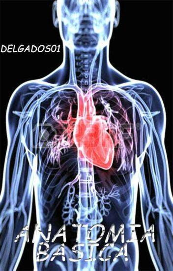 Anatomía: Conoce El Cuerpo Humano [Guía Basica] - Delgado S - Wattpad