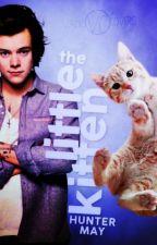 The Little Kitten- Larry AU- short story. by HunterMay18