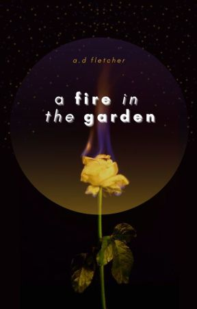 A Fire in the Garden   L.S by arlofletcher