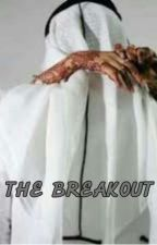 The breakout by asmaua_nyako