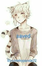 Saved~ Neko boy x reader by sneekypanda22