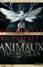 Tout Semblait Si Parfait (Fanfic AF) by growingsoul